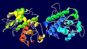 chitotriosidasi